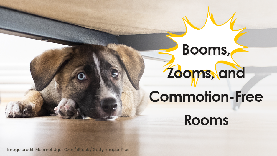 Help Your Pet Through Thunderstorms & Fireworks